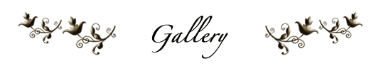 posttitle_gallery